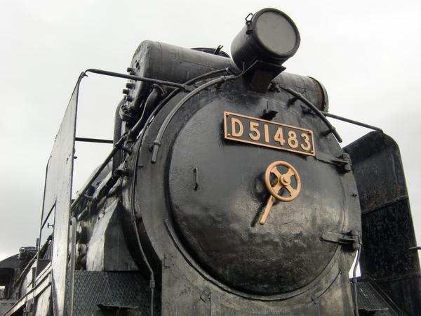 D51_4